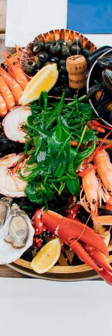 Oesterij in Yerseke // voor oesters en fruits de mer op de oesterputten