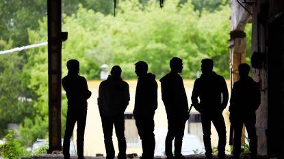 Een jongerenbende uit Tildonk is nog geen stadsbende uit Brussel