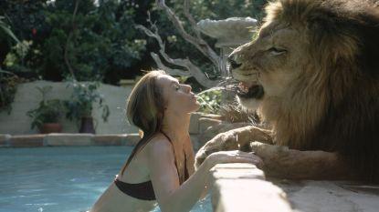 """Voor 'Tiger King' was er de 'Lion Queen': actrice Tippi Hedren voedde meer dan 50 leeuwen op voor """"gevaarlijkste film ooit"""""""