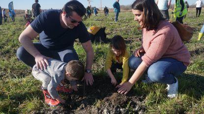 Boomplantactie is groot succes: 10.000 stekjes, ruim 300 enthousiastelingen en stralend weer