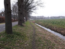 Achter de bomenrij langs de Oirschotseweg in Moergestel ligt een pad dat tot fietspad kan worden opgewaardeerd. De grond hoort echter bij het toekomstig Landgoed Reuseldal.