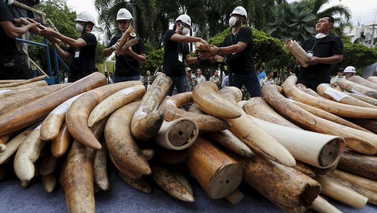 In beslag genomen ivoor in Thailand.