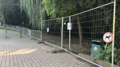 Hangjongeren gaan te ver: park achter oud gemeentehuis blijft dicht