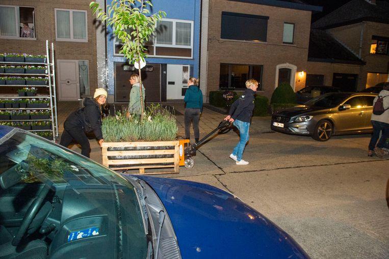 Voor het programma 'Make Belgium great again' heeft Frances Lefebure de Biekorfstraat te Aalst in het groen gezet. Lavendel en fruitbomen werden samen met vrijwilligers overal in het rond gezet.