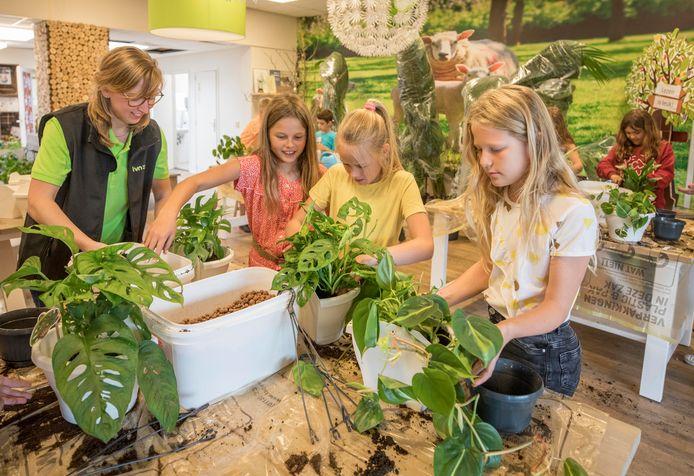 Anouk Otto van IVN Natuureducatie legt Femke, Jet en Esmee uit hoe ze hun plant het beste kunnen verpotten.