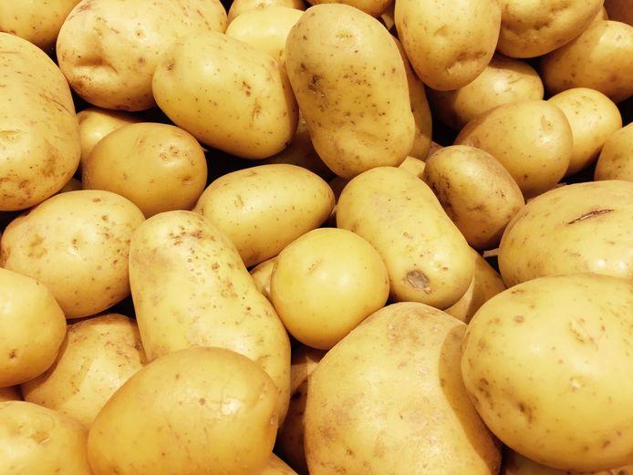 Aardappelen, daar draait het om bij Quik in Hedel.