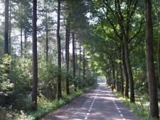 'Kijk of fietspad Bergsebaan tussen Den Hout en Teteringen in ere hersteld kan worden'