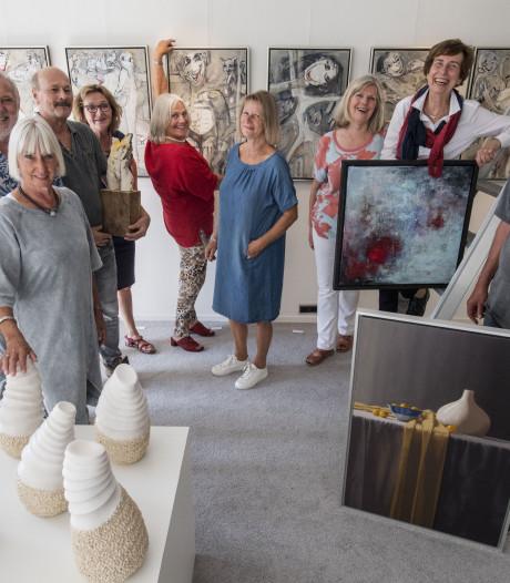Diversity: kunst uit Berkelland te zien in Haaksbergen