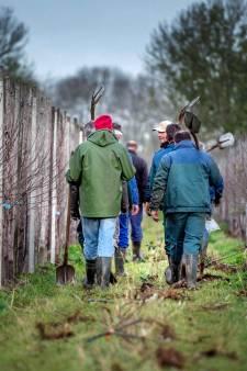 ZLTO: 'Voor ons is agriterreur niet voorbij'