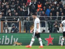 UEFA klaagt Besiktas aan voor rode kat op veld