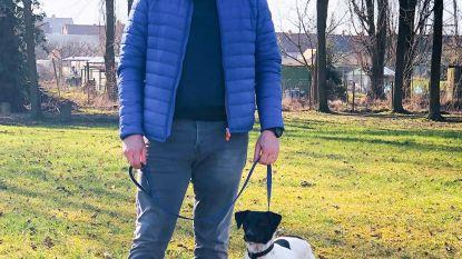 """""""Meer aandacht voor dierenwelzijn nodig"""": Open Vld wil hondenlosloopzone en geluidsarm vuurwerk"""