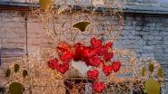 Kerstverlichting wordt valentijnsverlichting