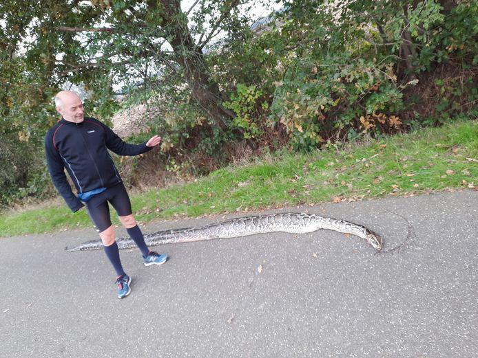 Michel Bego met de gevonden slang.