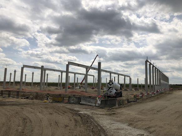 De funderingspalen van het nieuwe logistieke gebouw op Brucargo staan er al.