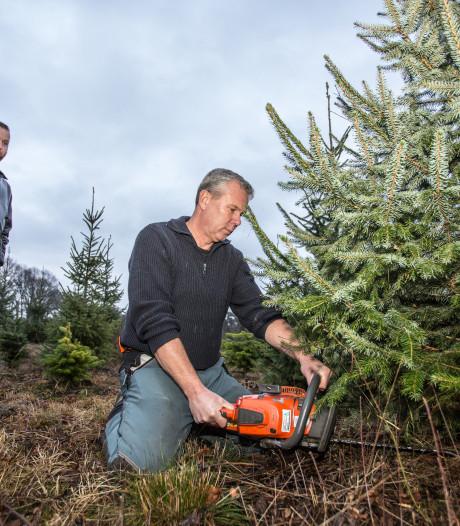 Boswachter Bart zaagt met ons een boom om