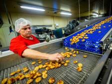 Johan werkt in de grootste pannenkoekenfabriek van Europa: 'Ik proef ieder half uur'