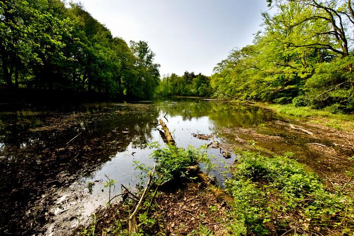 Het natuurgebied Springendal, dichtbij de bodemvervuiling.