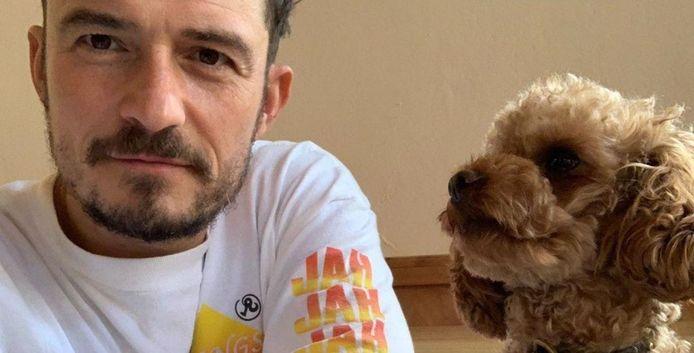 "Orlando Bloom et son chien ""Mighty""."