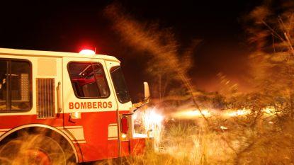 50-tal branden teisteren noorden van Spanje