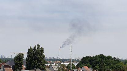 Hulpdiensten krijgen meldingen over grote rookpluim: affakkeling in haven aan de gang