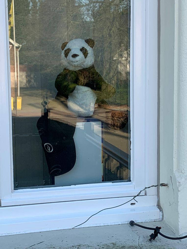 Zelfs de politiebeer in Meer doet mee...