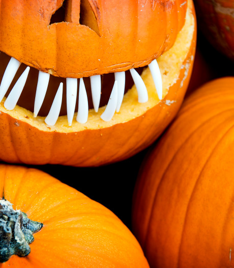 Spooktuinen, pompoenen en griezelige optochten: Delft wordt omgetoverd voor Halloween