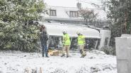 LIVE. Sneeuwzone trekt over Vlaanderen: meer sneeuw dan verwacht, tankwagen met 13.000 liter mazout kantelt