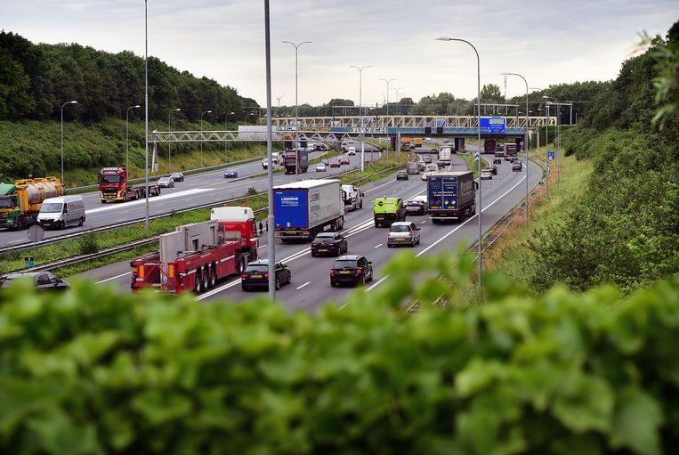 De Raad van State zette een streep door de verbreding van de A27, die ten koste zou gaan van natuurgebied Amelisweerd. Beeld Marcel van den Bergh