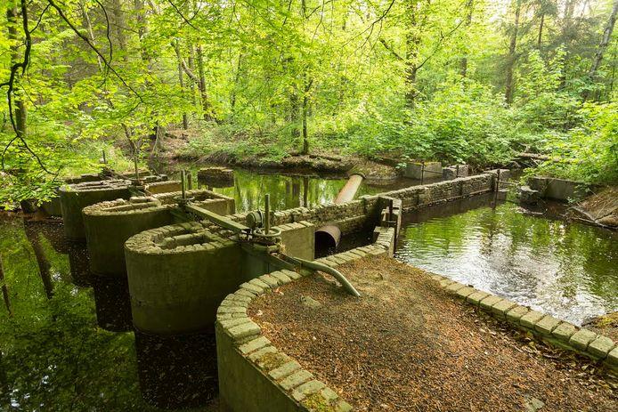 Het Waterloopbos in Marknesse trekt jaarlijks tienduizenden bezoekers.