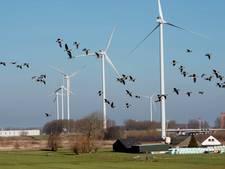 'Utrecht moet Nieuwegeiners serieus nemen bij windmolenplan'
