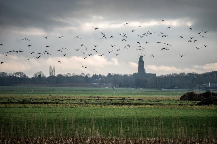 De Vuchtpolder ten noorden van Breda. Volbouwen maar?