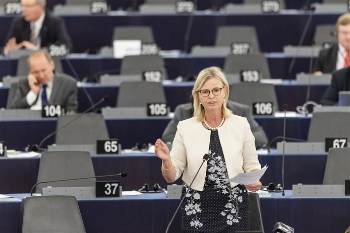 Annie Schreijer-Pierik spreekt in het Europees Parlement.