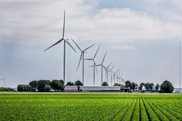 Windmolenpark in de gemeente Zeewolde. Beeld Raymond Rutting / de Volkskrant