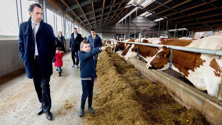 Staatssecretaris Martijn van Dam (Economische Zaken) krijgt een rondleiding op een melkveebedrijf. Beeld anp
