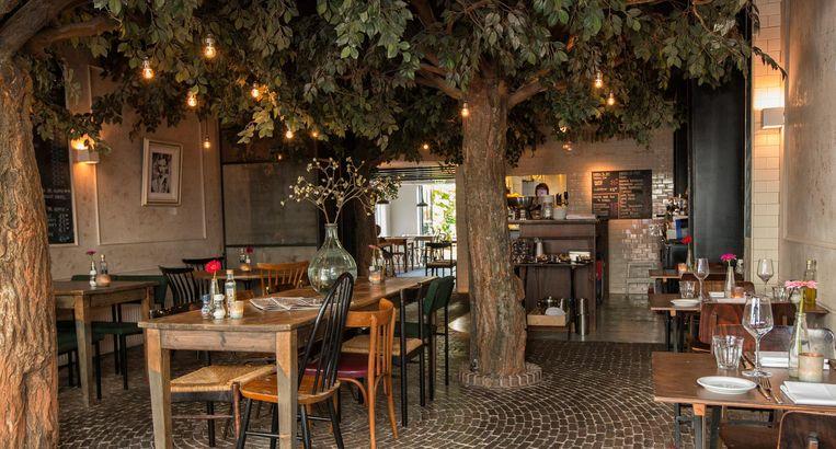 In eetcafé 't Weesperplein staan een aantal bomen met romantische lichtjes erin. Beeld 't Weesperplein