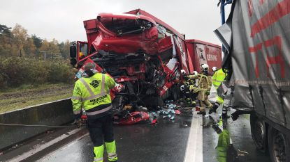 Trucker (48) overleden bij ongeval op E19 richting Antwerpen