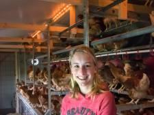 Ook op Kakelhoeve in Hierden blijven de kippen voorlopig binnen