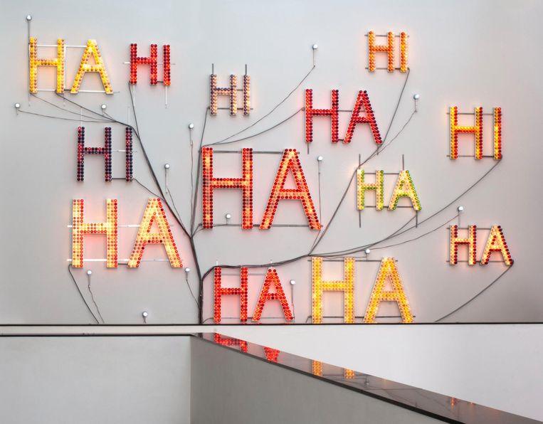 Kunstwerk Hi Ha werd in 2002 aangekocht door het Van Abbemuseum in Eindhoven. Beeld Peter Cox