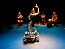 Spaanse sfeer op Flamenco Festival in NatLab