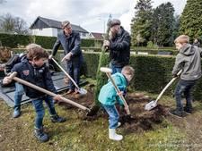 Borne krijgt educatieve naaldbomentuin op begraafplaats