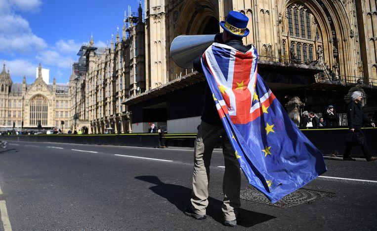 Een pro-EU-demonstrant bij het parlement in Londen, 25 maart 2019. Beeld EPA