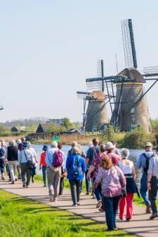 'Spontaan' bezoekje van tourbussen aan Kinderdijk straks verleden tijd