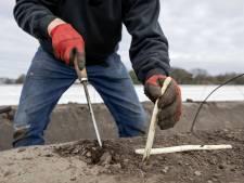 Altena: huisvest arbeidsmigranten op bedrijventerrein en rand van dorp