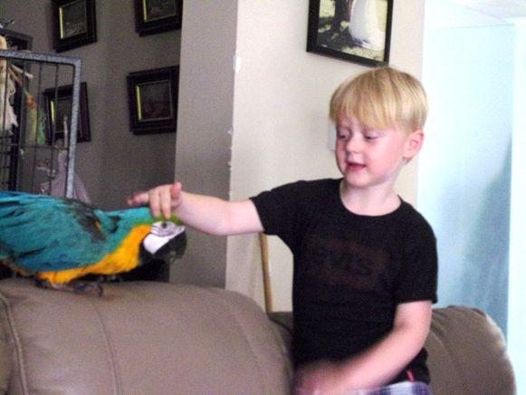 Kleinzoon Mathias (5) en papegaai Jacko zijn allerbeste vrienden.