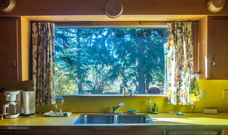 De keuken van de familie Hemingway. Beeld Chantal van Wees / Getty