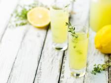 China bevestigt: deze limoncello uit Peize is écht de beste ter wereld