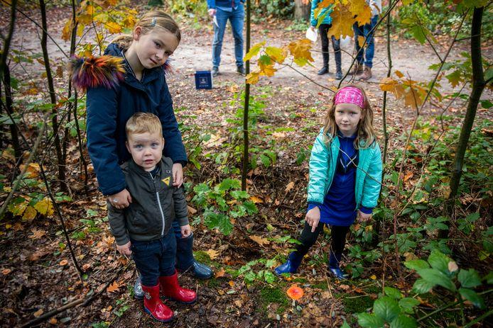 Lisa (9), Melle (2,5) en Emma de Langen (7) ontdekken in de Clingse bossen een paddenstoel met rode hoed tijdens wandeling met opa en oma Wim en Marga Verhoeven.