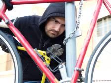 Voor 600 miljoen euro aan fietsen gejat, mobiele bendes jagen vooral in de grensstreek op dure e-bikes