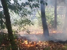 Bosbrand in Malden waarschijnlijk aangestoken