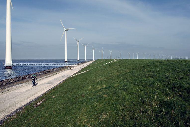 Windmolenpark. (Marcel van den Bergh / de Volkskrant) Beeld Marcel van den Bergh